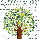 دوستی با محیط زیست