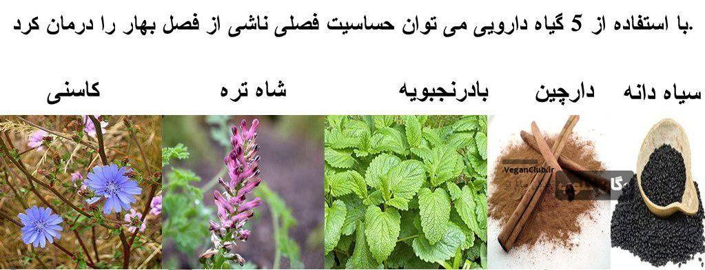 درمان حساسیت فصل بهار با گیاهان دارویی