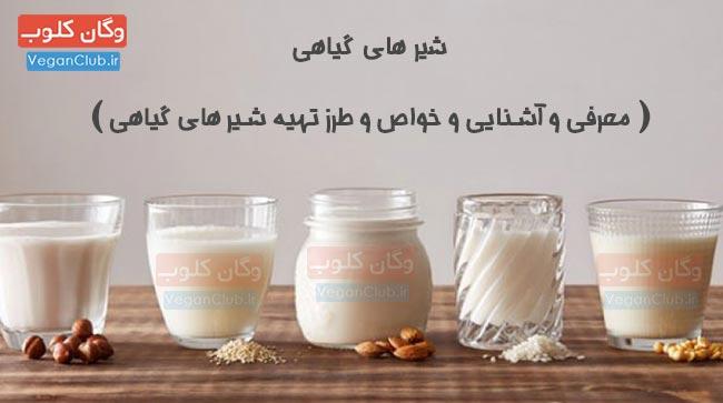 آشنایی و طرز تهیه شیرهای گیاهی
