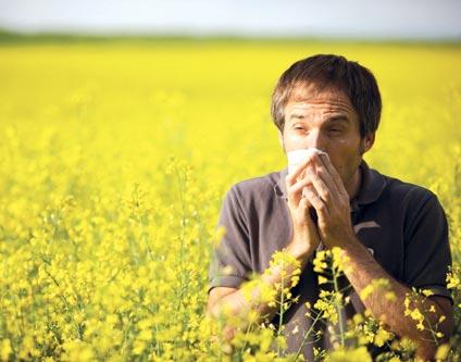 حساسیت های بهاری و راه های درمان گیاهی