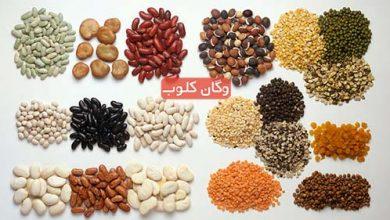 تصویر از تامین پروتئین در منابع گیاهی